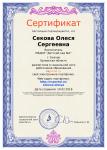 sertifikat_portfolio-1010154-180708