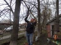 05 Папы нам помогут опилить деревья