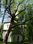 reg-school.ru/tula/yasnogorsk/revyakino/sobytiya/beaver-20150529-image003.jpg