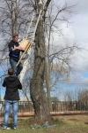 reg-school.ru/tula/yasnogorsk/ivankovskaya/news/image00120150422skvor.jpg