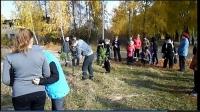 reg-school.ru/tula/arsenievo/pervomaisk/news/trees-20141007-05.jpg
