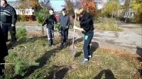 reg-school.ru/tula/arsenievo/pervomaisk/news/trees-20141007-02.jpg