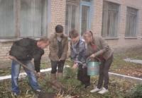 reg-school.ru/tula/arsenievo/pervomaisk/news/trees-20141007-01.jpg