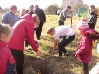 reg-school.ru/tula/arsenievo/pervomaisk/news/trees-20141007-04.jpg