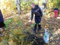 reg-school.ru/tula/arsenievo/belokolodez/news/news-20141113-44.JPG