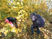 reg-school.ru/tula/arsenievo/belokolodez/news/news-20141113-43.JPG