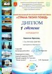 Диплом-Никитин