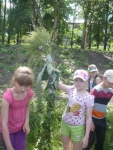 reg-school.ru/tula/volovo/stancionnaya/News2015/imag005.jpg
