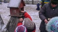 Дети старшей группы кормят птиц