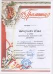 Кашулкин-Илья