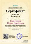 Cертификат отличия I степени-Педагогическая деятельность_ сущность, структура, функции