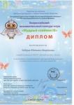 Дипломы за участие во Всероссийском познавательном конкурсе Мудрый совенок 3 - 0003