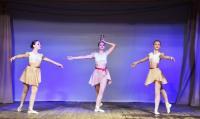 Фрагмент из балета Баядерка