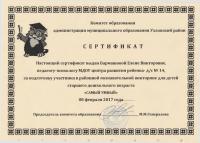 Бармашова сертификат