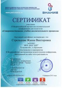 Сертификат Стрельцова - 0001